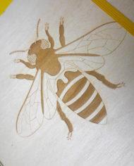 Notes pszczola6
